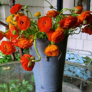 outdoor bouquets….