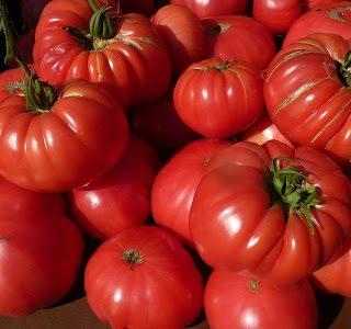 gazpacho, from inspiring tomatoes….