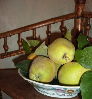 A basket of Quince