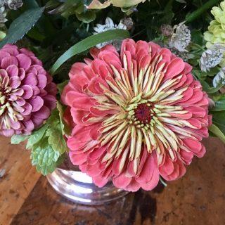 Dusky Zinnias inspire a Big Easy bouquet…