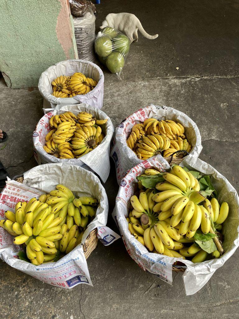 Baskets of bananas, Bangkok produce market, Pak Khlong Talat