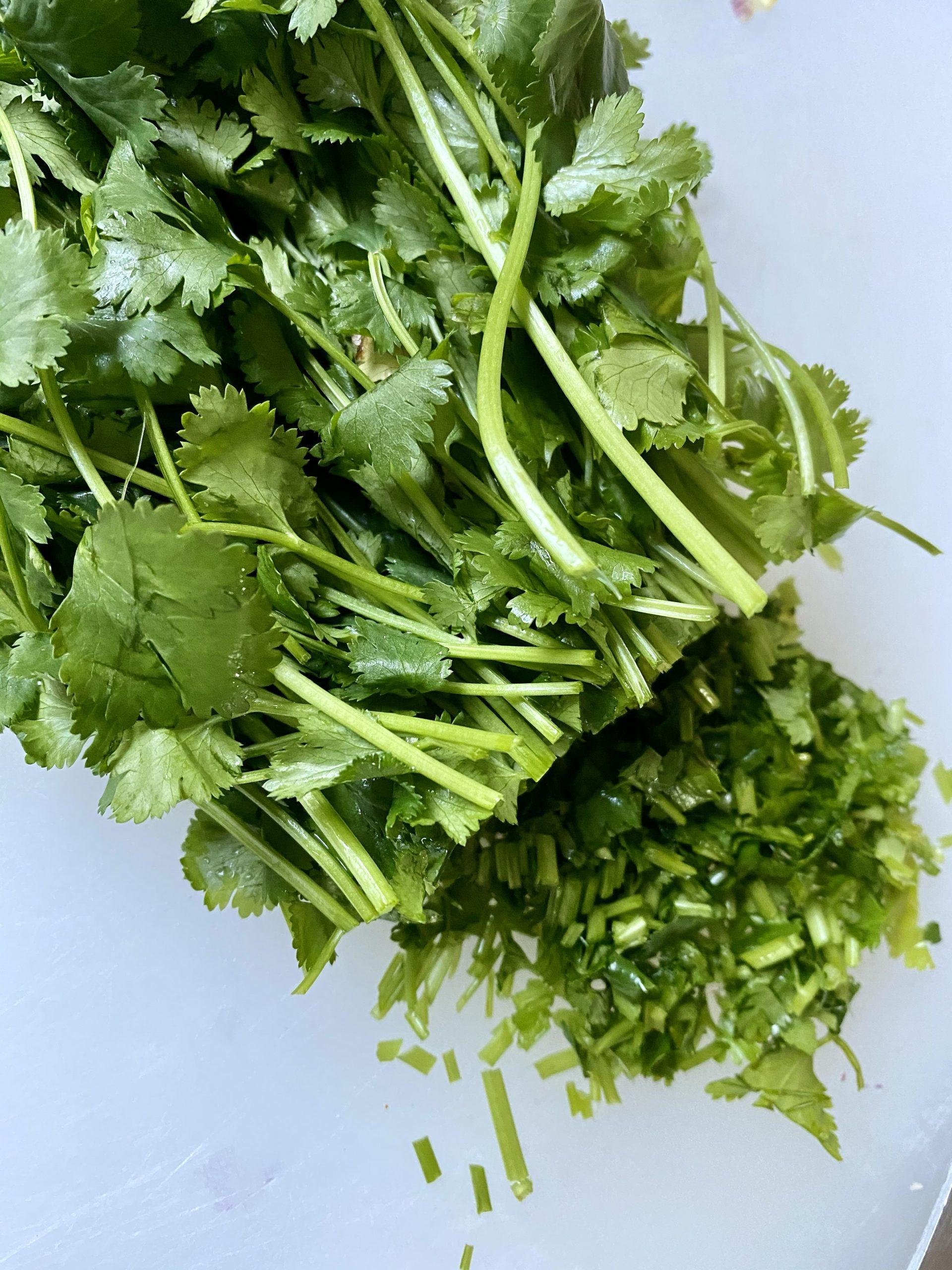 cilantro, bunch of cilantro, chopped cilantro