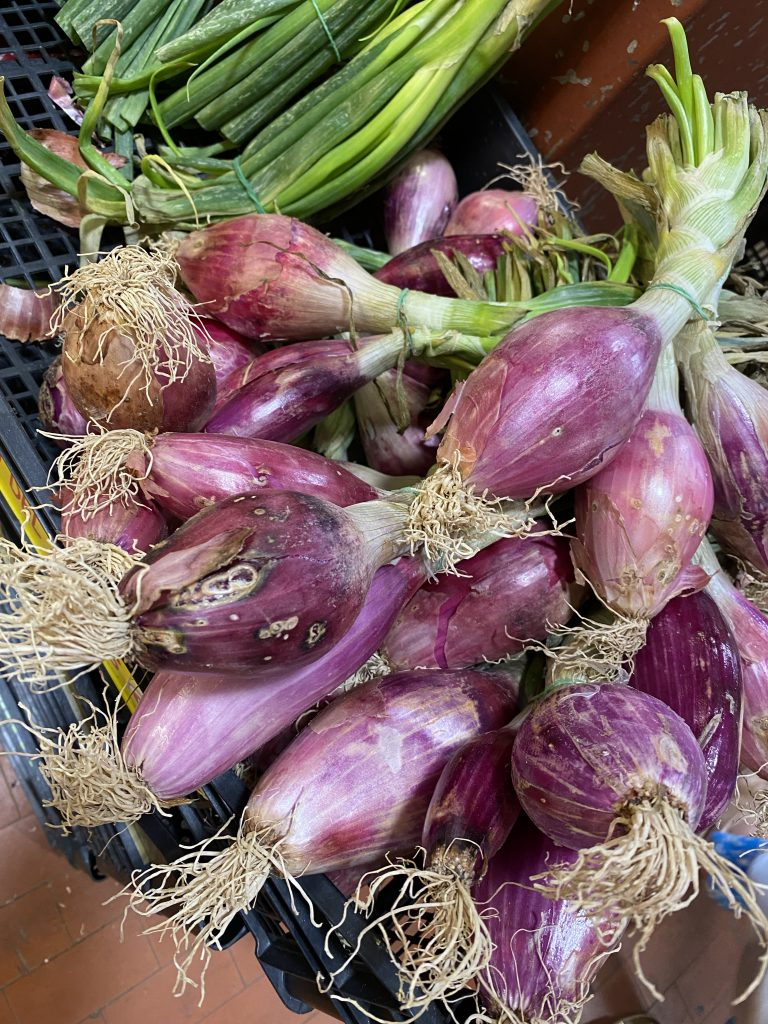 Mercato dei Fiori, Ventimiglia, Italy, Ventimille, Italie, red onions