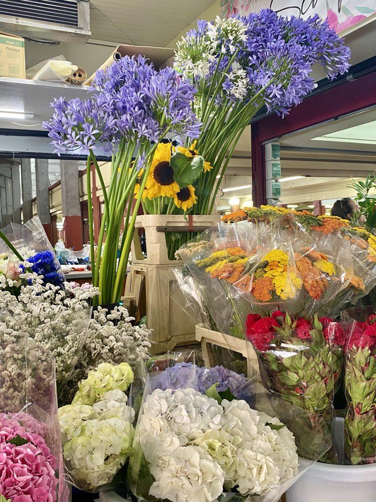 Mercato dei Fiori, Ventimiglia, Italy, Ventimille, Italie, local flowers, agapanthus, Lily's of the Nile