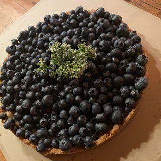 Lazy lady no-bake Blueberry tart
